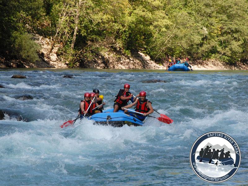 Rafting Tarom